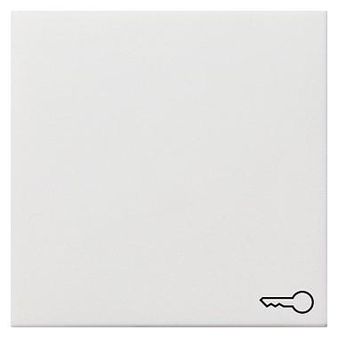 Klawisz symbol klucza Gira F100 biały 0287112