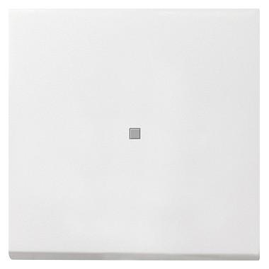 Klawisz okienko kontr. Gira F100 biały 0290112