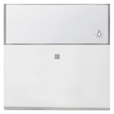 Klawisz kontrolny z polem opisowym Gira F100 biały 0670112