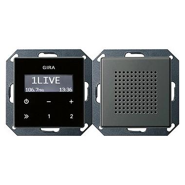 Radio pt. RDS Gira E22 naturalny stalowy 228020